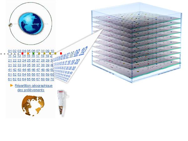 http://www.aillet.com/Appel/Cube.jpg